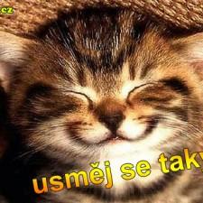 Usměj se taky :)