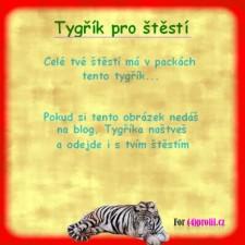 Tygřík pro štěstí