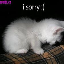 I sorry