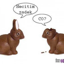Čokoládoví zajíčci